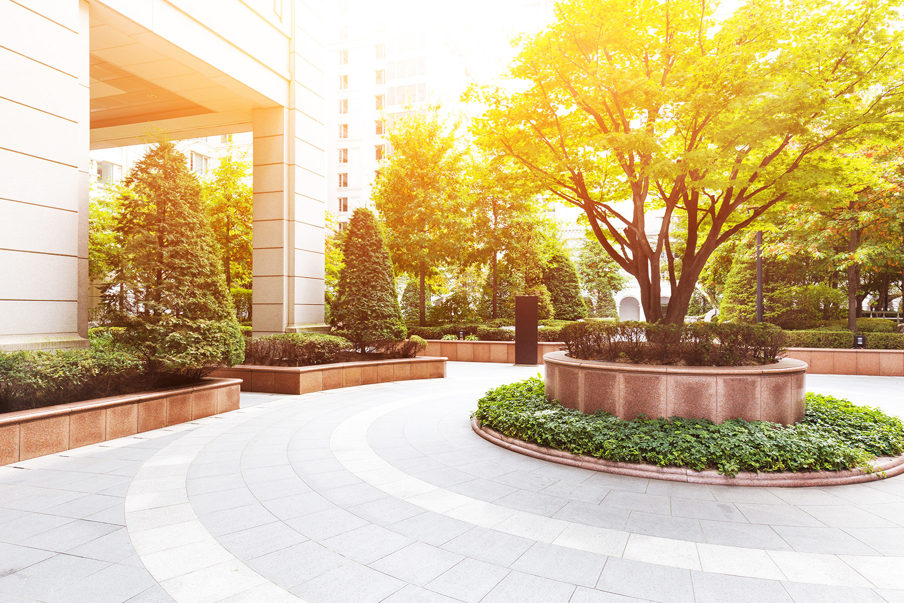 View of beautiful outdoor courtyard in commercial setting
